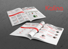 Marketing-kit for Web Studio Kalina