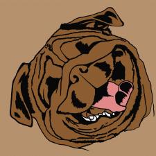Портрет мопса