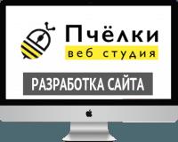 """Веб студия """"Пчёлки"""" - разработка сайта"""