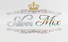 логотип Silver Mix