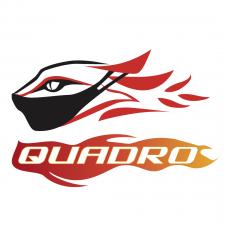 сезонная адаптация логотипа