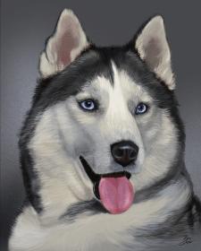 Иллюстрация волк