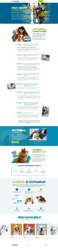 Дизайн сайта статьи о товаре для животных