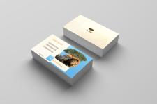 Дизайн визитки Safari