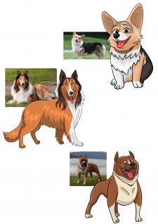 #Стилизованные портреты собак
