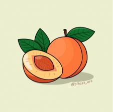 Peach vector illustration