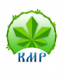 Графический дизайн. Логотип для молодёжной организ