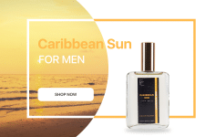 Вариант баннера для мужского парфюма