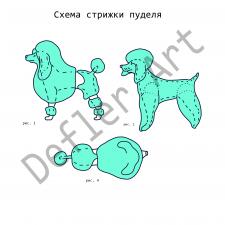 Схемы стрижек собак/иллюстрации