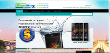 Наполнение интернет-магазина mobishop spb