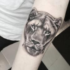 Тату львица tattoo lioness