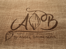 логотип  для Асель Баширова