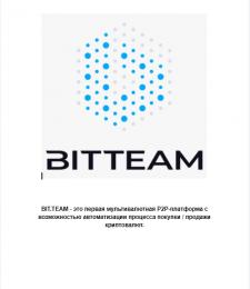 Написание whitepaper для проекта Bit Team