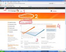 Экпресс-анализ сайта для конкурентов web-canape.ru