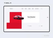 Tesla Concept