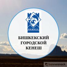 Бишкекский Городской Кенеш