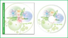 Illustrator, дизайн обкладики CD, 2007р