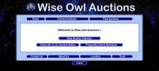 Wise Owl Auctions