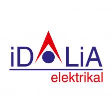 "Логотип для компании ""Идалия"""