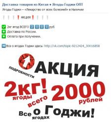 """Продвижение ВКонтакте """"Ягоды Годжи"""""""
