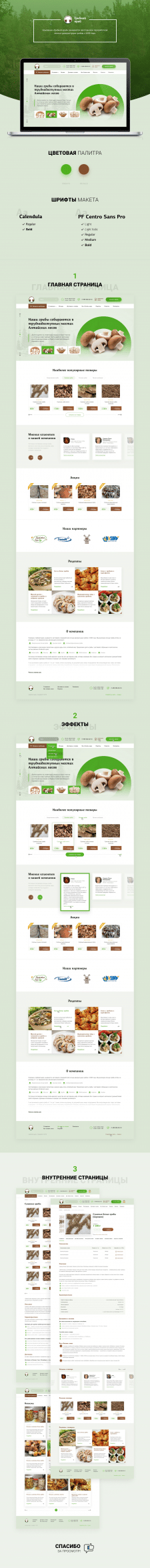 Дизайн сайта Грибной край