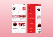 USUPSO приложение для украинской франшизы
