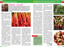 Разворот журнала о садоводстве