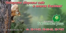 """Билборд 3х6 """"Бобачевская роща"""""""