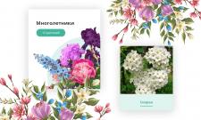 Верстка и интеграция карточек категорий цветов