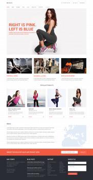 Biruang - Разработка шаблона интернет магазина
