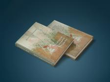 Макет обложки книги (рисунок Люси Петрик)