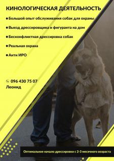 Кинологическая деятельность (дрессировка собак)