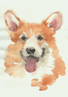Watercolour corgi