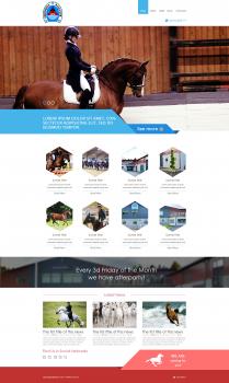 Дизайн сайта для конного клуба в Швеции