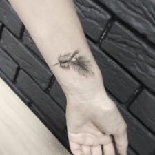 Тату перо tattoo feather