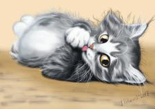 котенок, растр