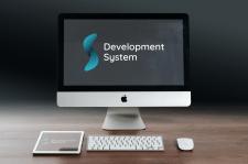 Development System