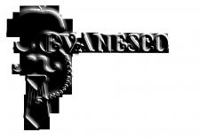 Логотип дизайн студии Evanesco
