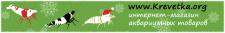 Создание новогоднего баннера интернет-магазина