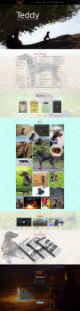 Landing page for German Shorthaired Pointer site