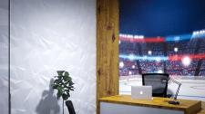 Офис федерации хоккея. Кабинет зам. президента