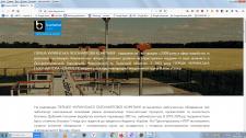 """Внутренняя оптимизация сайта """"Pugnc"""""""