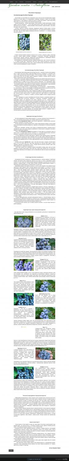 Vaccinium (Чорниця)