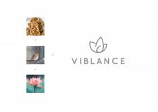 Логотип Viblance