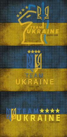 Концепт логотипов для киберкоманды по шахматам.