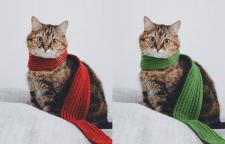 замена цвета предметов на фотографии