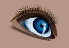 Векторное изображение глаза