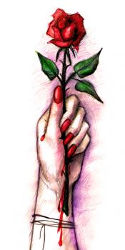 Роза (иллюстрация к книге)