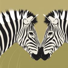 "Time for illustration ""Zebras"""