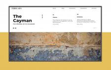 Веб разработка - Landing Page